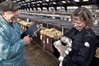 Animal Health & Welfare Research